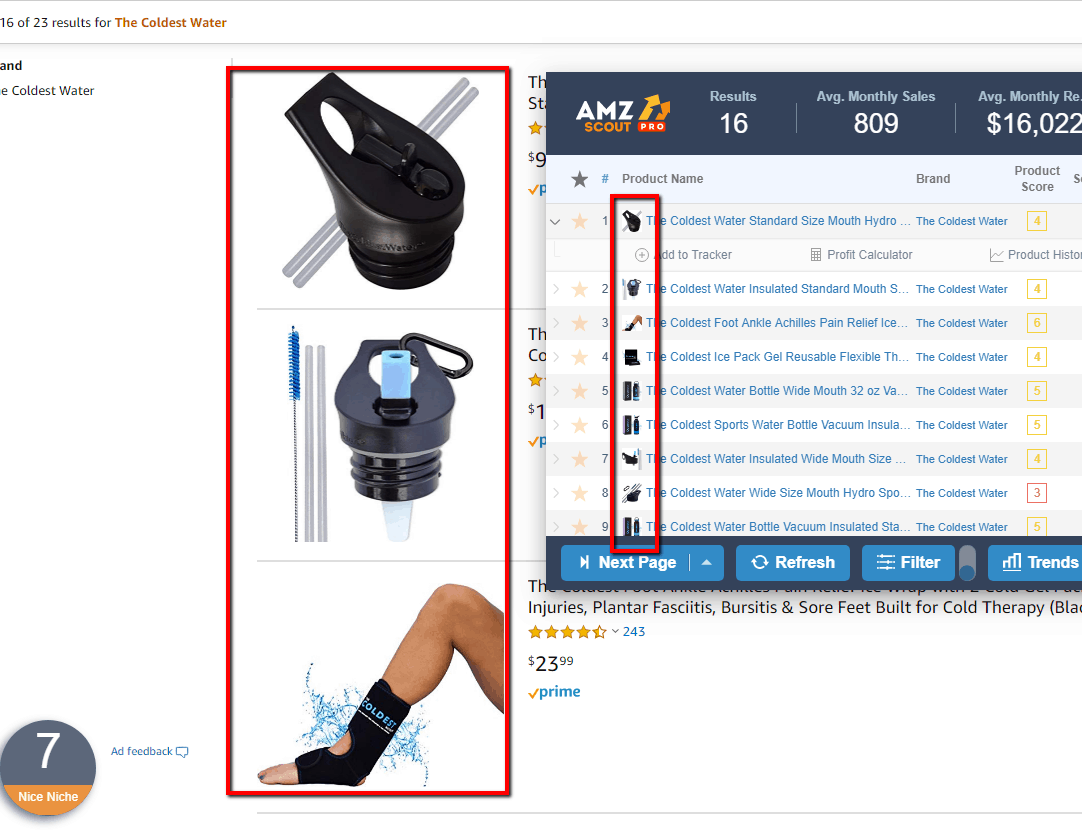 Use scouting tools on competitor Amazon Storefront
