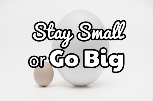 Stay small or go big with your Amazon business